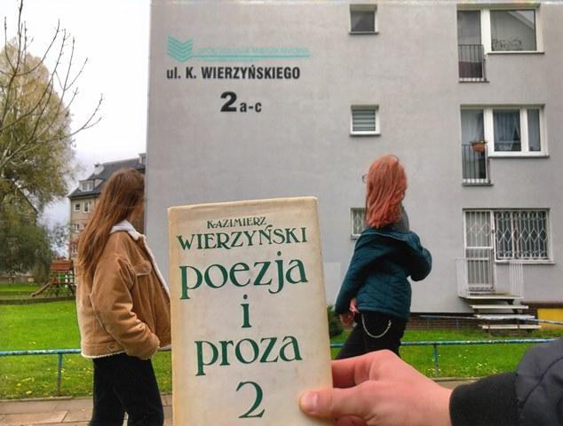 ul.K.Wierzyńskiego_Pilarowski.jpg