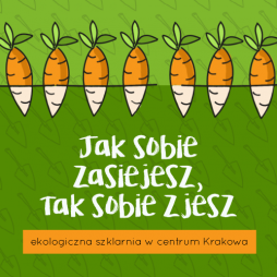 Jak sobie zasiejesz, tak sobie zjesz. Ekologiczna szklarnia w centrum Krakowa.